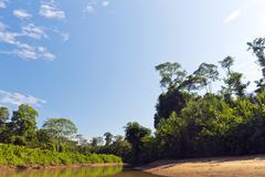 Amazonian river, the rio cononaco in ecuador Stock Photos