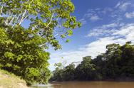 Stock Photo of amazonian river, the rio cononaco in ecuador