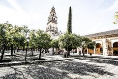Stock Photo of mezquita (mosque)/cathedral bell tower, cordoba, cordoba province, andalusia,