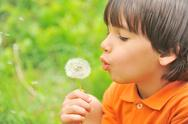 Stock Photo of kid blowing dandelion outdoor on green