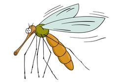 gnat - stock illustration