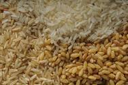 Stock Photo of Rice