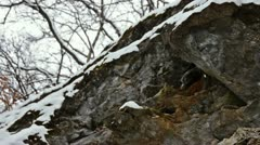 Snowy day in front of a rock Stock Footage