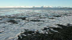 Ice in Mud Bay Stock Footage