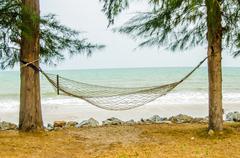 hammock hanging on tree on beach - stock photo