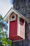 A bird house in a forest Stock Photos