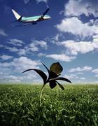 Lentokone pois Kuvituskuvat