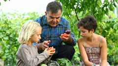 Adult Farmer with Children Stock Footage
