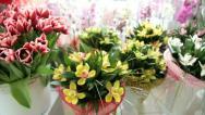 Fresh Cut Bouquets In Flower Shop Stock Footage