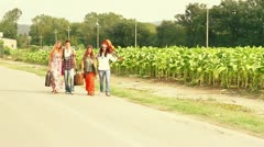 Hippie Group Walking on a Countryside Road - stock footage