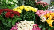 DOLLY: Fresh Cut Flowers In Florist Shop Stock Footage