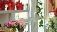 Flower Shop Interior Stock Footage