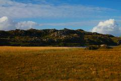 Dry field and rocky hills. Stock Photos