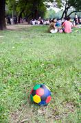 colorful football on green field - stock photo