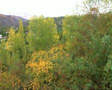 Armenia06village Stock Footage