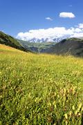 View of the savoy alps-europe Stock Photos