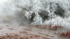 Hot natural springs hoar ice frost on trees HD 5074 Stock Footage