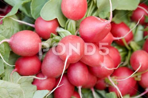 Stock photo of full frame radish background