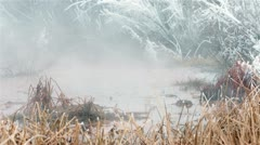 Natural hot springs reeds hoar frost mist and steam fast HD 5076 Stock Footage