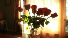 Golden Sun Moves over Dozen Red Roses in Sunrise Timelapse Stock Footage
