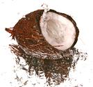 Water and coconut Stock Photos