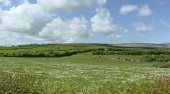 Land parcels with hedgerows + Karst landscape The Burren in background Stock Footage
