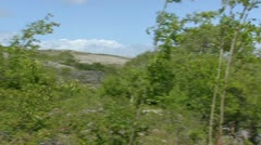 Pan + hold wind in trees + Karst landscape The Burren in background Stock Footage