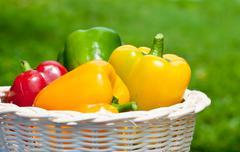 Fresh sweet  paprika in wood basket Stock Photos