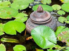 Jar in the the lotus pound. Stock Photos