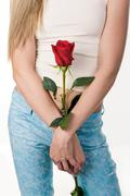 Close-up of feminine hands with red rose in background of her trousered legs Stock Photos