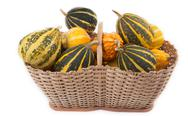 Stock Photo of decorative pumpkins in basket