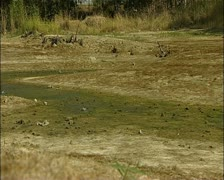 Cyprus drought - mud and dry banks at a dam in Cyprus 16:9 PAL Stock Footage