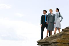 Image of confident business group standing on the top of mountain and looking as Kuvituskuvat