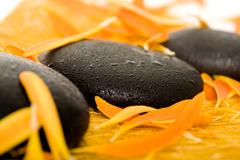 Row of black spa stones in an environment of orange petals Stock Photos