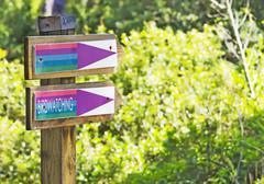Birdwatching Stock Photos
