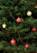 Close-up of fir tree branch with decorative balls and garlands on it Stock Photos