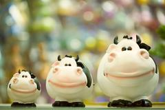 Image of three fat toy cows standing in line on shop window Stock Photos