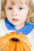 Photo of young girl giving the orange daisy Stock Photos