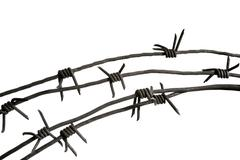 Stock Photo of close-up of piece of barbwire with prickles over white background