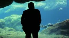 Man Watching Large Fish at Aquarium Stock Footage