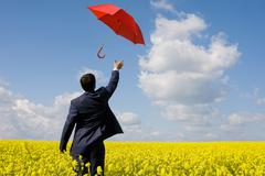 rear view of young businessman stretching arm towards red umbrella in flower fie - stock photo
