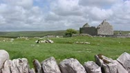 Stock Video Footage of Stone house or church Ruin at Caherconnell, The Burren, Ireland