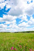 Photo of bright cloudy sky with beautiful meadow below Stock Photos