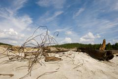 image of wire and old tree trunk on sand somewhere outside - stock photo