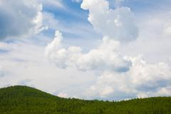 Photo of bright blue sky with white clouds over green trees Stock Photos