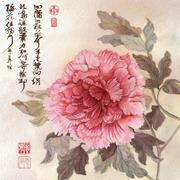 Stock Illustration of painted pink peony on beige background with chinese calligraphy near by