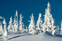 photo of wonderful scene somewhere in mountains or winter resort - stock photo