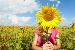 Photo of young woman hiding face behind sunflower in meadow Stock Photos