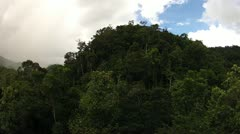 Time lapse of rain forest in Ranomafana, Madagascar. Stock Footage