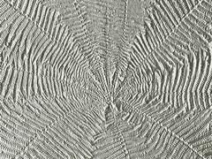 Convex prints like a fern Stock Photos